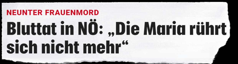 """Hier ist folgende Schlagzeile zu lesen: """"Bluttat in NÖ: 'Die Maria rührt sich nicht mehr' """"."""